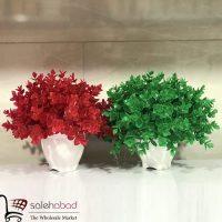فروش عمده گلدان بوته شمشاد رنگی ۳۰۱۰
