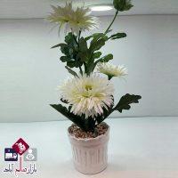 فروش عمده گلدان ژرویرا سطلی سفید
