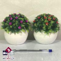 فروش عمده گلدان بن سای صحرایی گلدار