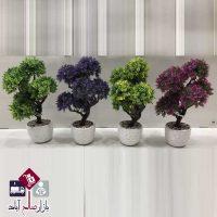 فروش عمده گلدان و درختچه بن سای هفت کوپه