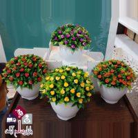 فروش عمده گلدان های بن سای گلدار