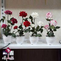 فروش عمده گلدان با شاخه گل رز مخملی