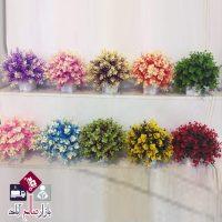 فروش عمده گلدان شمشاد دو رنگ شیک