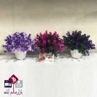 فروش عمده گلدان پلاستیکی شمشاد کوچک