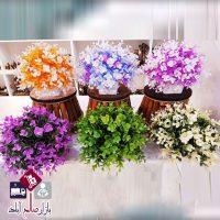 فروش عمده گلدان شمشاد رنگی
