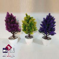 فروش عمده گلدان درختچه شمشاد تزئینی