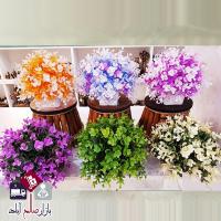 فروش عمده گلدان شمشاد رنگی دکوری