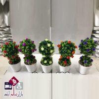 فروش عمده درختچه بنسای ۲ کوپه گلدار