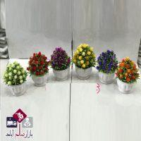 فروش عمده گلدان درختچه کاج گلدار رنگی