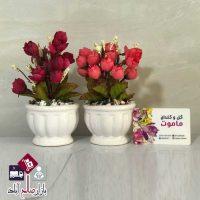 فروش عمده گلدان و بوته رز لب فر