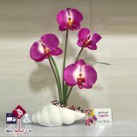 فروش عمده گلدان حلزونی ارکیده چهار گل