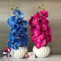 فروش عمده گلدان گل ارکیده طرح اطلسی