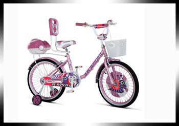 فروش عمده انواع دوچرخه
