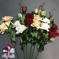 فروش عمده شاخه گل رز مخملی