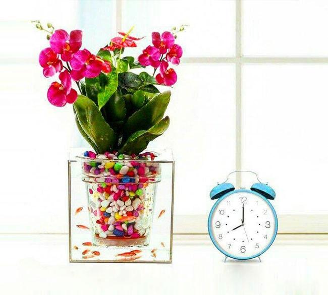 خرید عمده آکواریوم طرح گلدان شیشهای